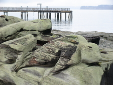 Log Carvings-Port Townsend, WA photography by Laura Wong-Rose